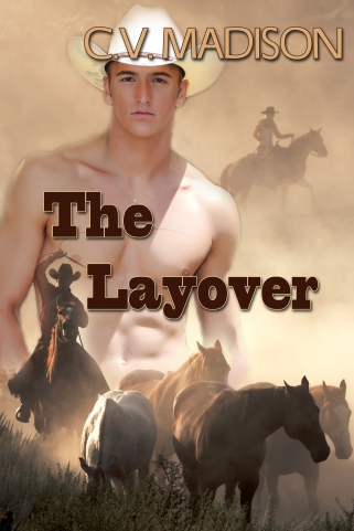 TheLayover